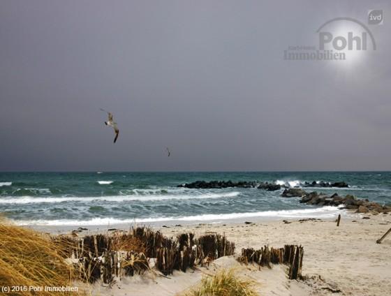 772 - Kleine Sommer-Residenz am Ostseestrand Kalifornien